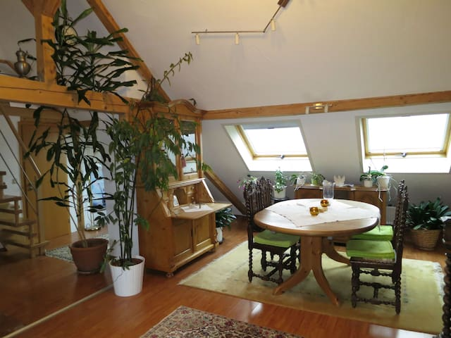 Ferienwohnung Roswitha in Blieskastel-Biesingen - Blieskastel - Apartemen