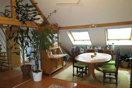 Ferienwohnung Roswitha in Blieskastel-Biesingen - Blieskastel - Apartmen