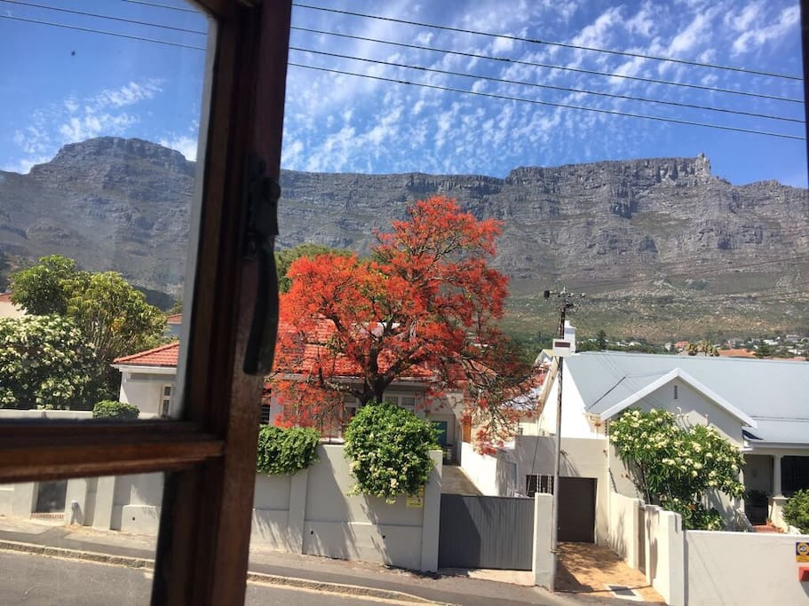 amazing views from all bedrooms and the patio of table mountain and lions head