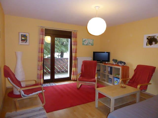Abtsteinach/Odenwald, ca. 25km bis Heidelberg - Abtsteinach - Apartment