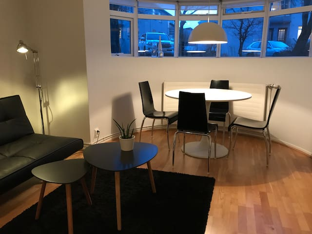 Quiet and comfy apartment close to city center - Reykjavík