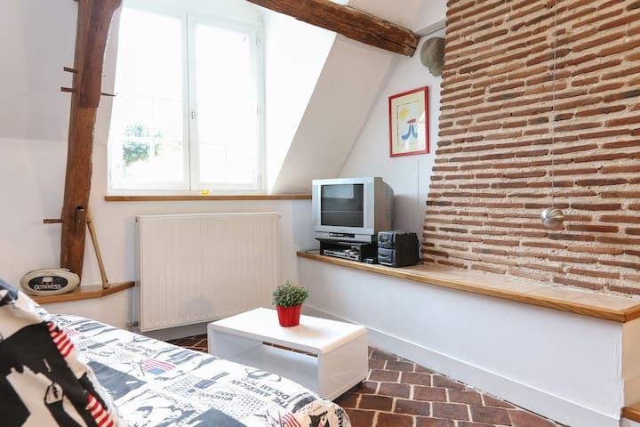 Gîte La Duboiserie pour 2/4 personnes en Touraine - Truyes - Lägenhet