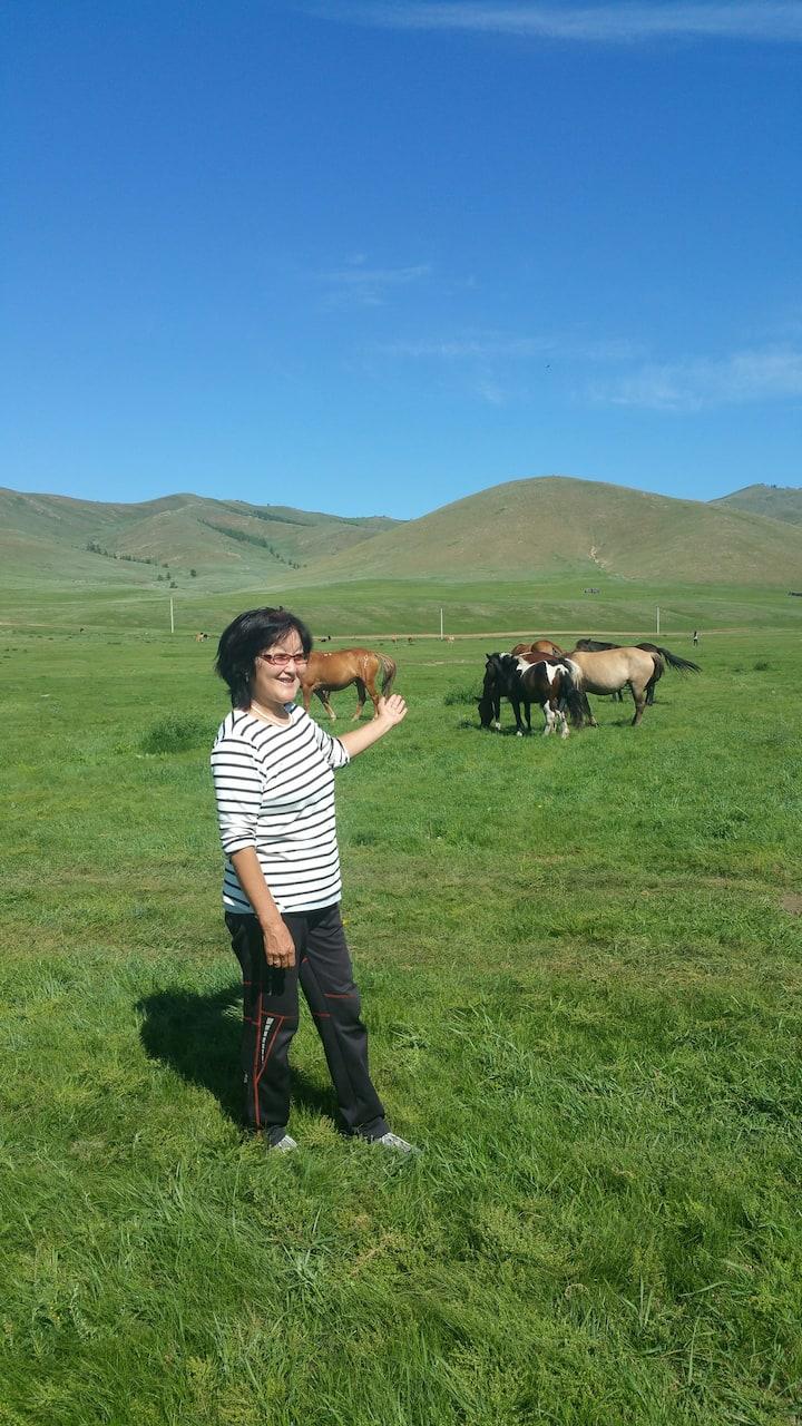 Mongolian horse.