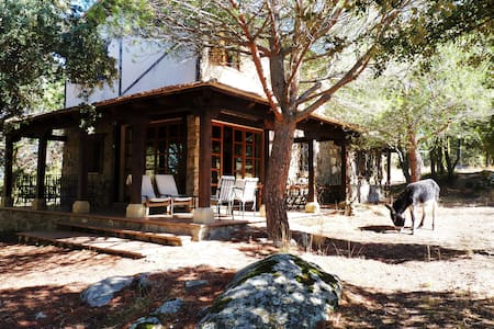Gran casa familiar a 15 minutos de Segovia - Ortigosa del Monte