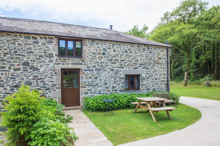 Elegant Holiday Home in Tavistock with Garden, Barbecue, Fireplace