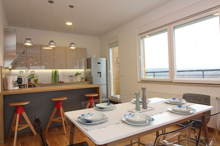 Spacious luxury and family friendly appartment - Zagrep - Daire