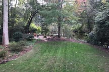 Backyard view from deck area.