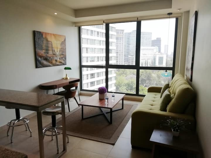 Excelent Suite Polanco Area