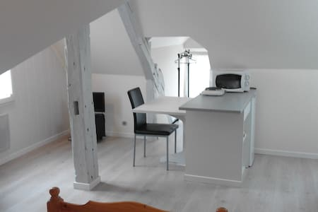Studio centre ville Briare / 50 m du Canal - Briare - Apartment