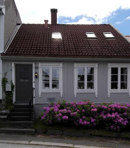 Elinors hus, sentralt i Halden