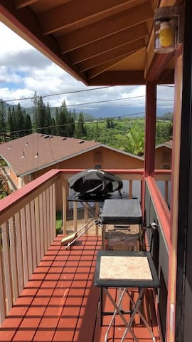 Grill and Stove/oven on Lanai (balcony)
