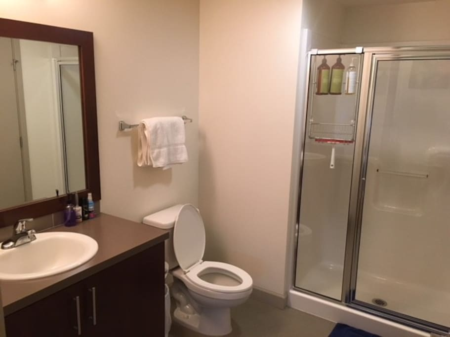 Private ensuite bathroom - stocked with natural bodywash, shampoo, and conditioner. We supply hand soap, towels, TP, lint roller, and wrinkle remover. Everything looks brand new!