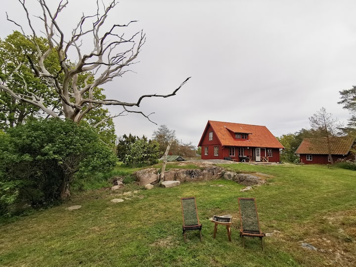 Cottage on an island in the archipelago