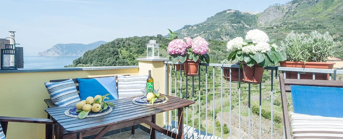 Studio4 Sea View WI-FI Cooking Park - Corniglia - House