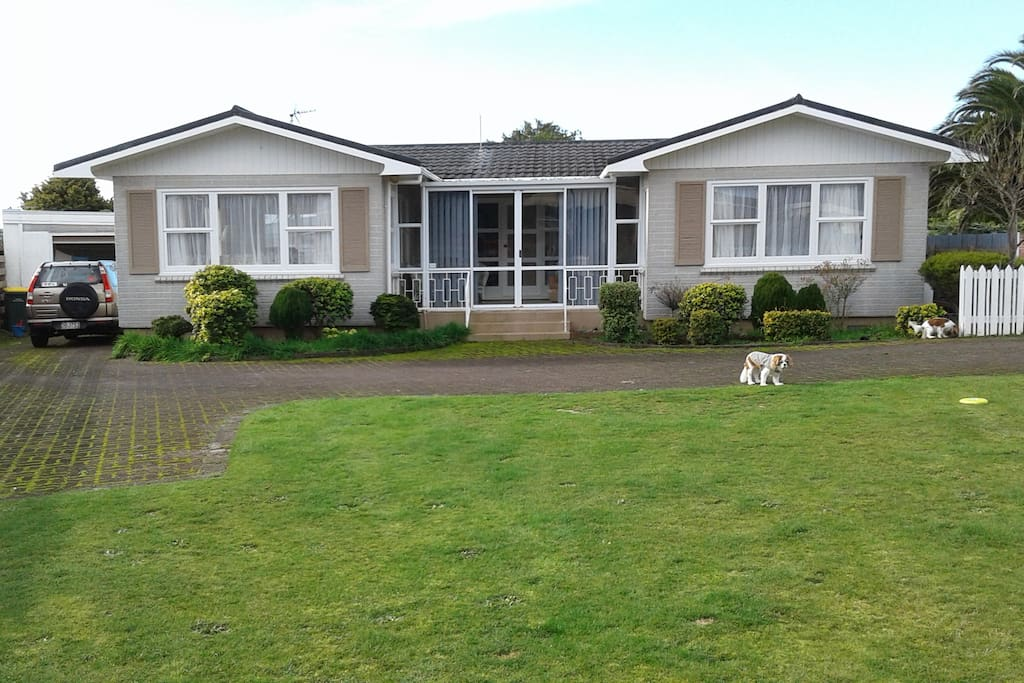 Rooms For Rent New Plymouth