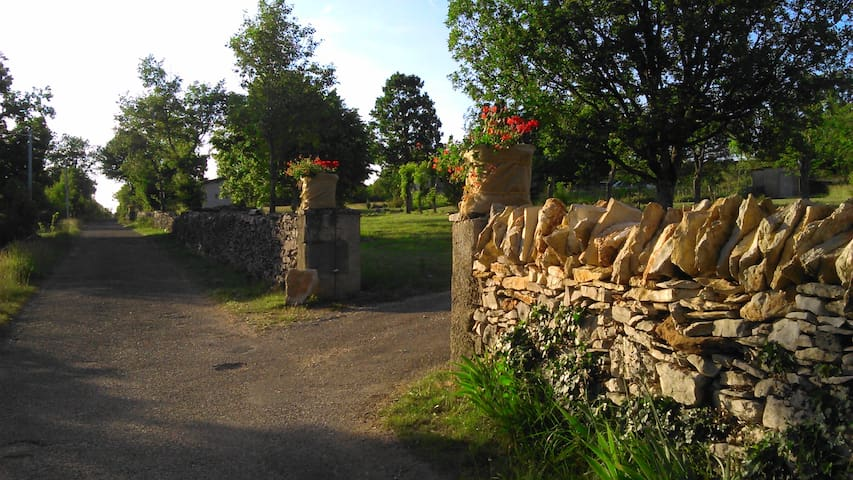 Le dolmen de Falgayras, nature - Saint-Jean-de-Laur - Huis