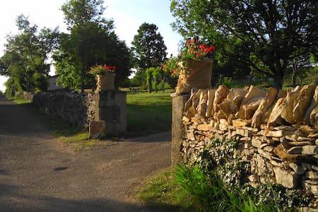 Le dolmen de Falgayras, nature - Saint-Jean-de-Laur