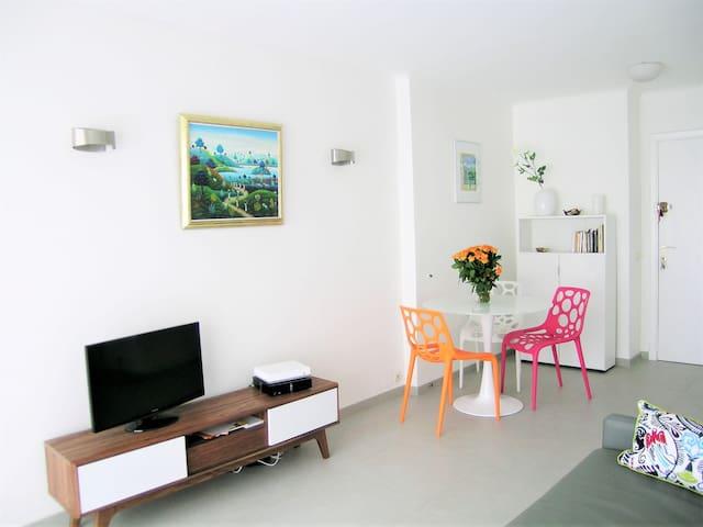Modern one bedroom apartment near the Croisette