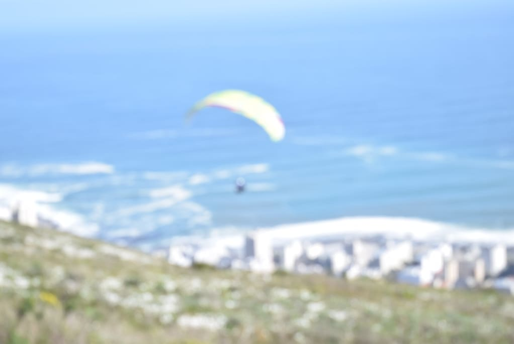 Hang gliding off Signal Hill
