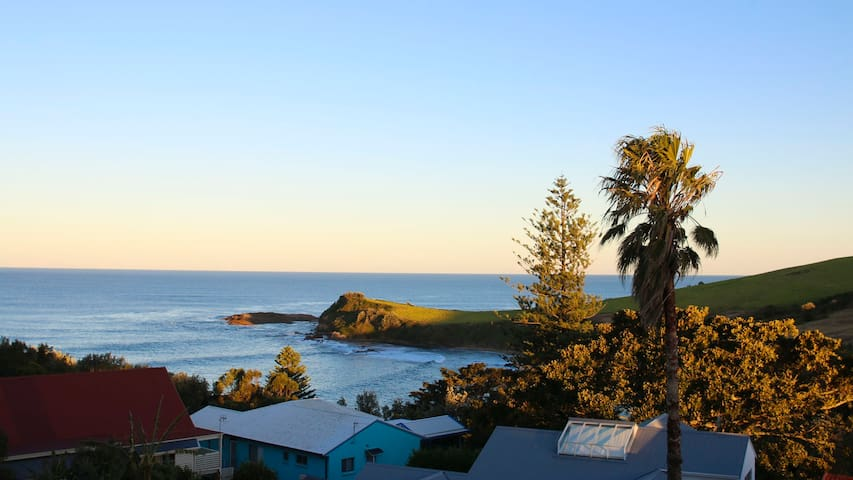 WHALE WATCH FOR FOUR, Gerringong