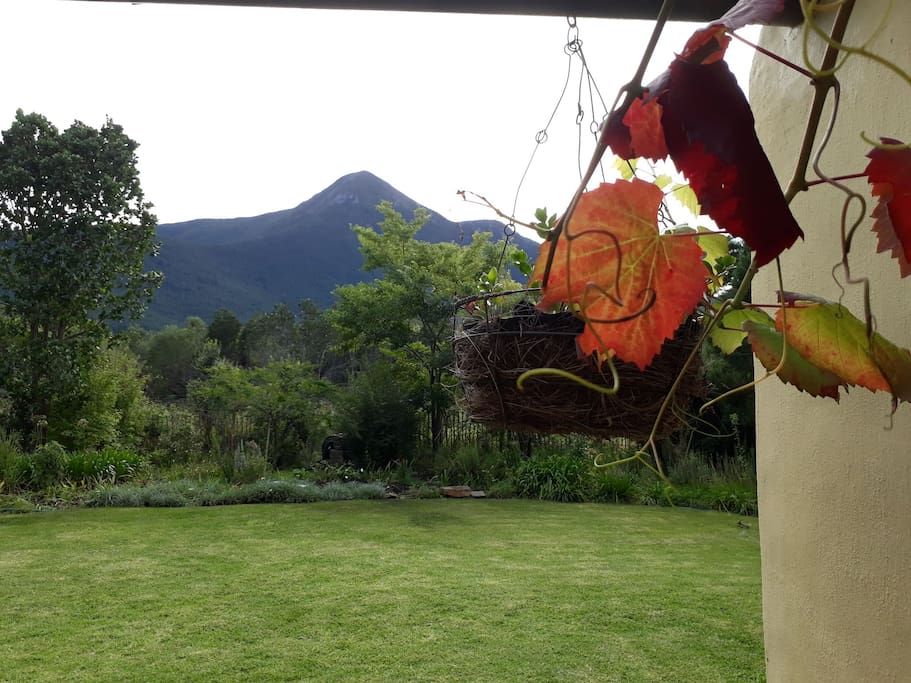 Storms River peak and autumn leaves - view from the verandah.