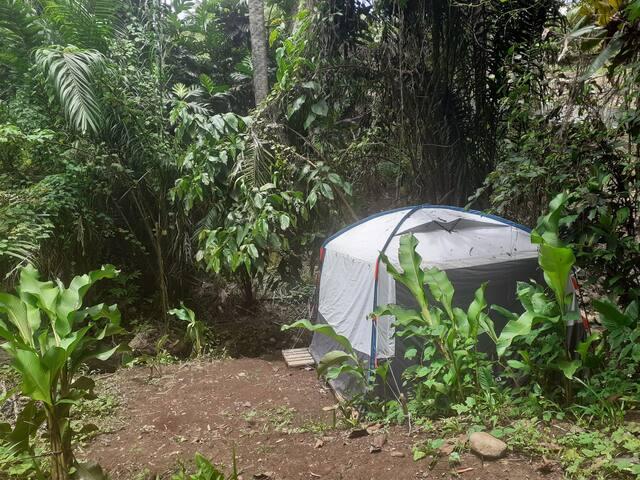 Le Camping de Roots Evasions
