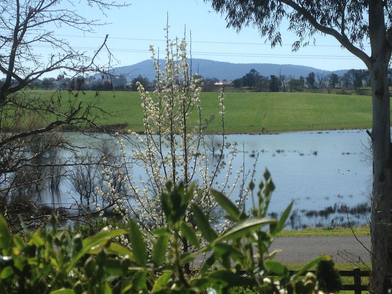 Mumbulla views
