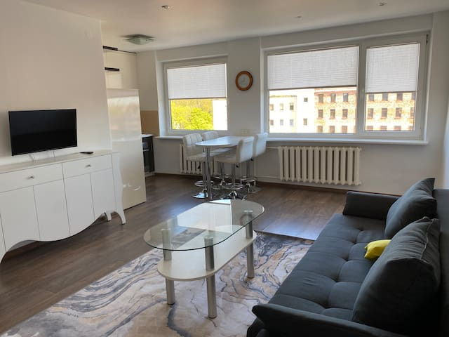 Spacy apartament near the city center and the sea