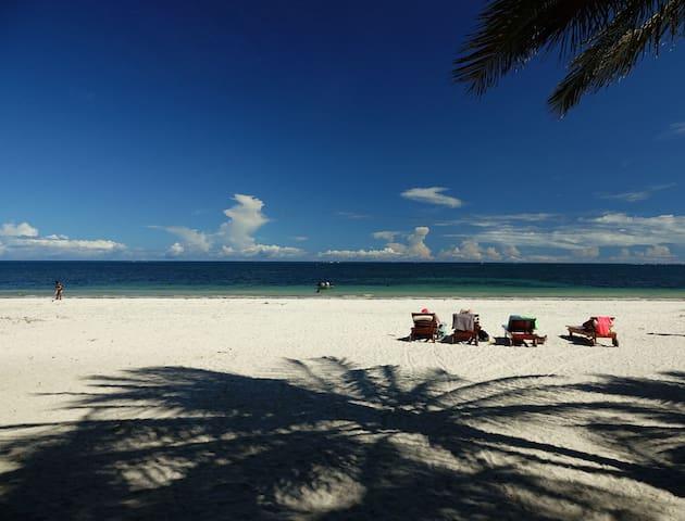 Cowrie Shell Designer studio at pristine beach