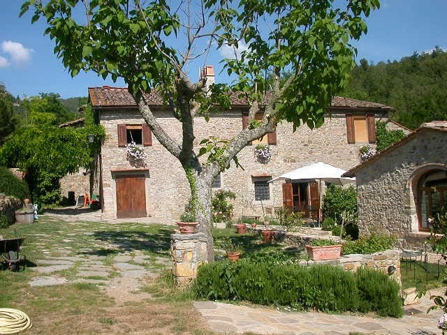 ancient farmhouse between woods and vineyards - Greve in Chianti - Casa