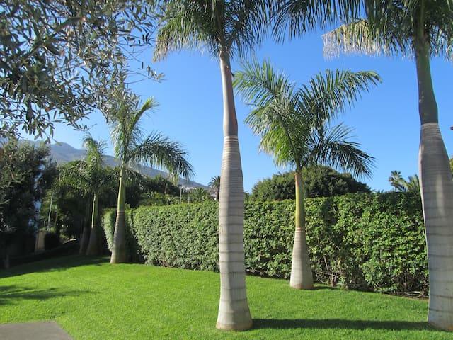 zona verde del residencial
