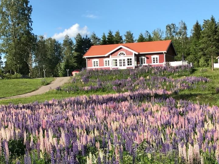 Solåsen, Sillebotten, Årjäng- 4 Bedroom Villa