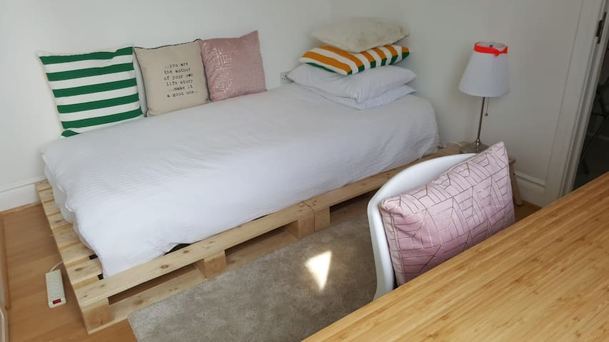 Cosy Ranelagh Townhouse (vegan home)