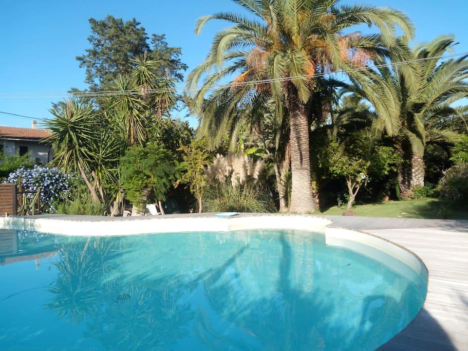 studio dans villa avec piscine et jardin partag villas louer palerme sicilia italie. Black Bedroom Furniture Sets. Home Design Ideas