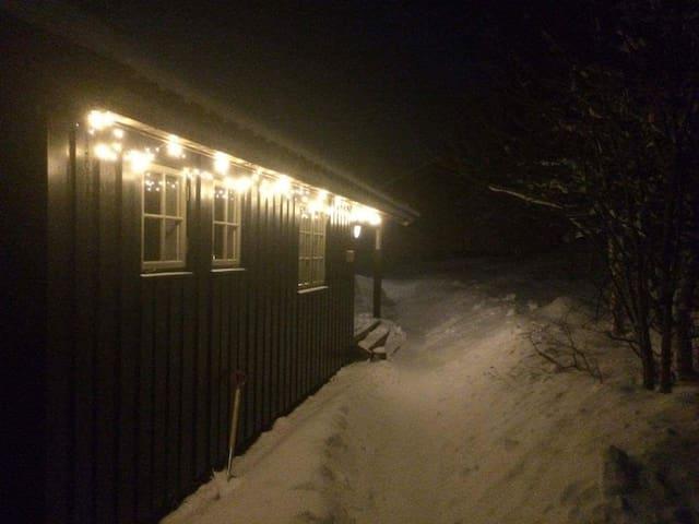 Ålen/Røros/Novola