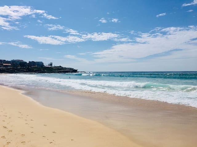5 min walk from Maroubra Beach