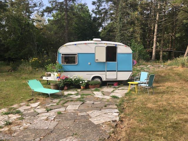 Vintage Caravan in the Woods