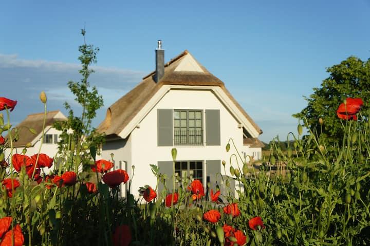 Reetdachhaus Typ B am Bakenberg