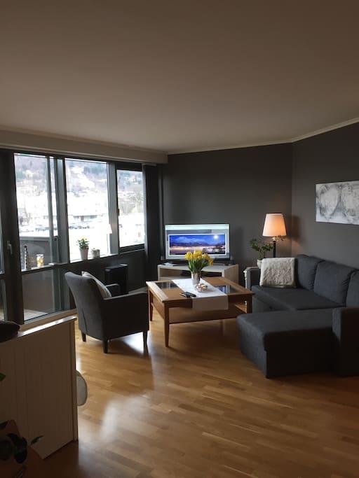 TV med diverse kanaler og tilgang på smart-funksjoner