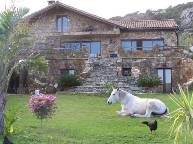 Apartement MOUNTAIN,SEA and HORSES - Tarifa - Apartment