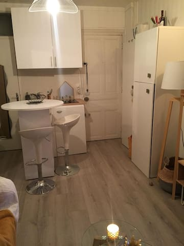 MODERN AND RENOVATED FLAT IN PARIS TROCADERO