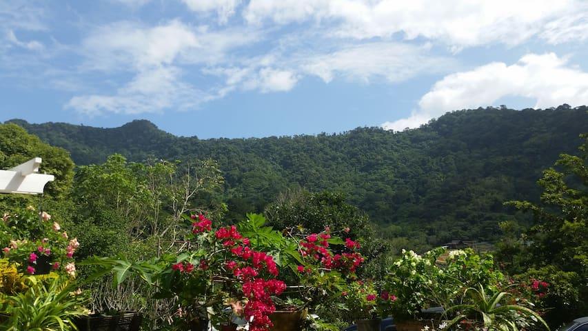 Perico Villas (Modern Eco-Living)