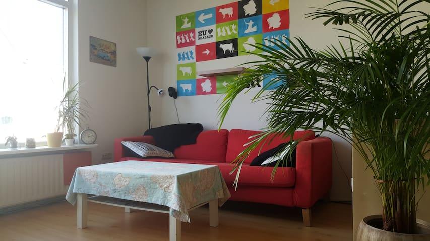 Comfy couch in Enschede city center - Enschede - Huis