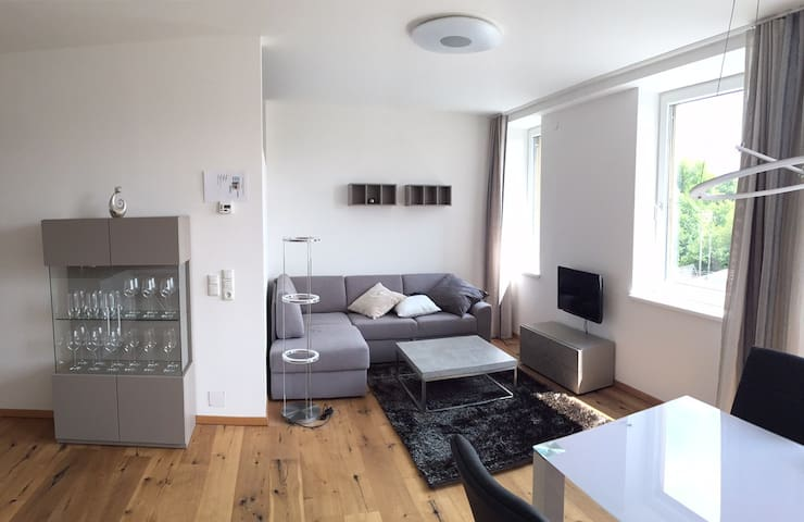 New apartment in the centre of Steyr - Steyr - Apartemen