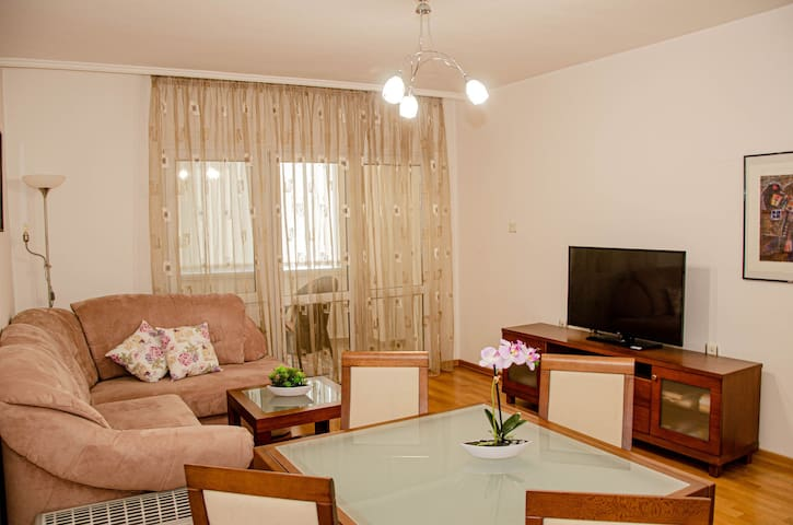 Cozy one bedroom apartament near the center