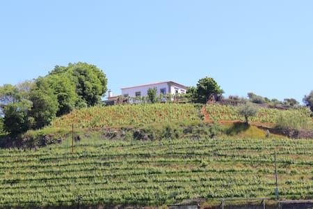 Lola&Toni, peaceful retreat at Douro Valley