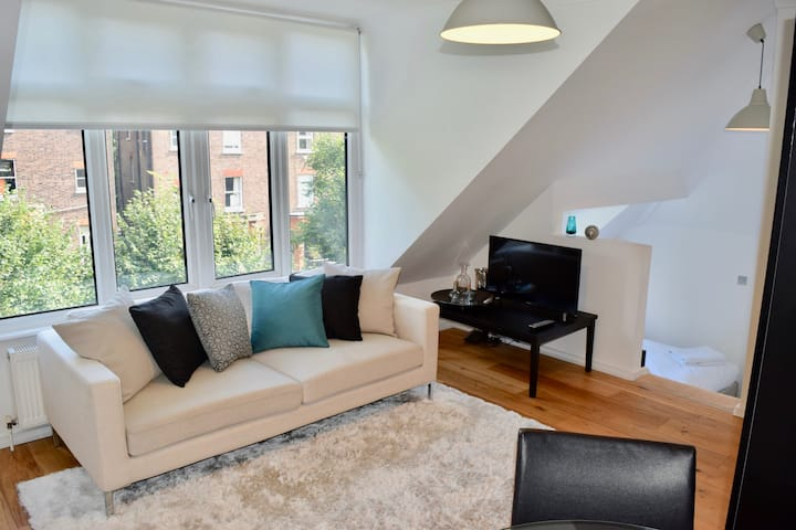 Cute and cosy London apartment (FR9)