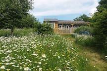 The Garden Cottage overlooks my wild flower garden