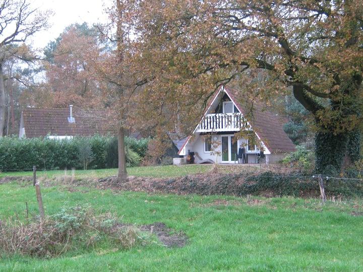 gezellige vakantiewoning op rustig park bij Ommen