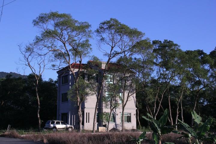 小套房,一雙人床,窗外綠樹,近東華大學